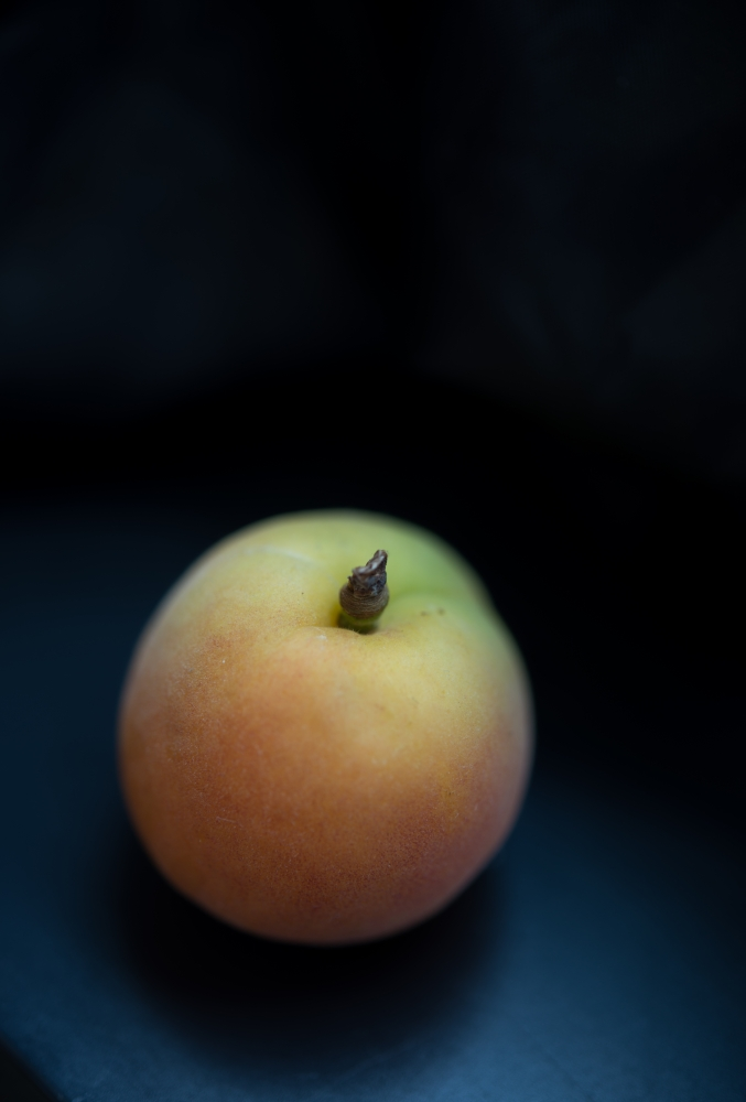 Food Photography Gallery - Lemm on Food Apricot