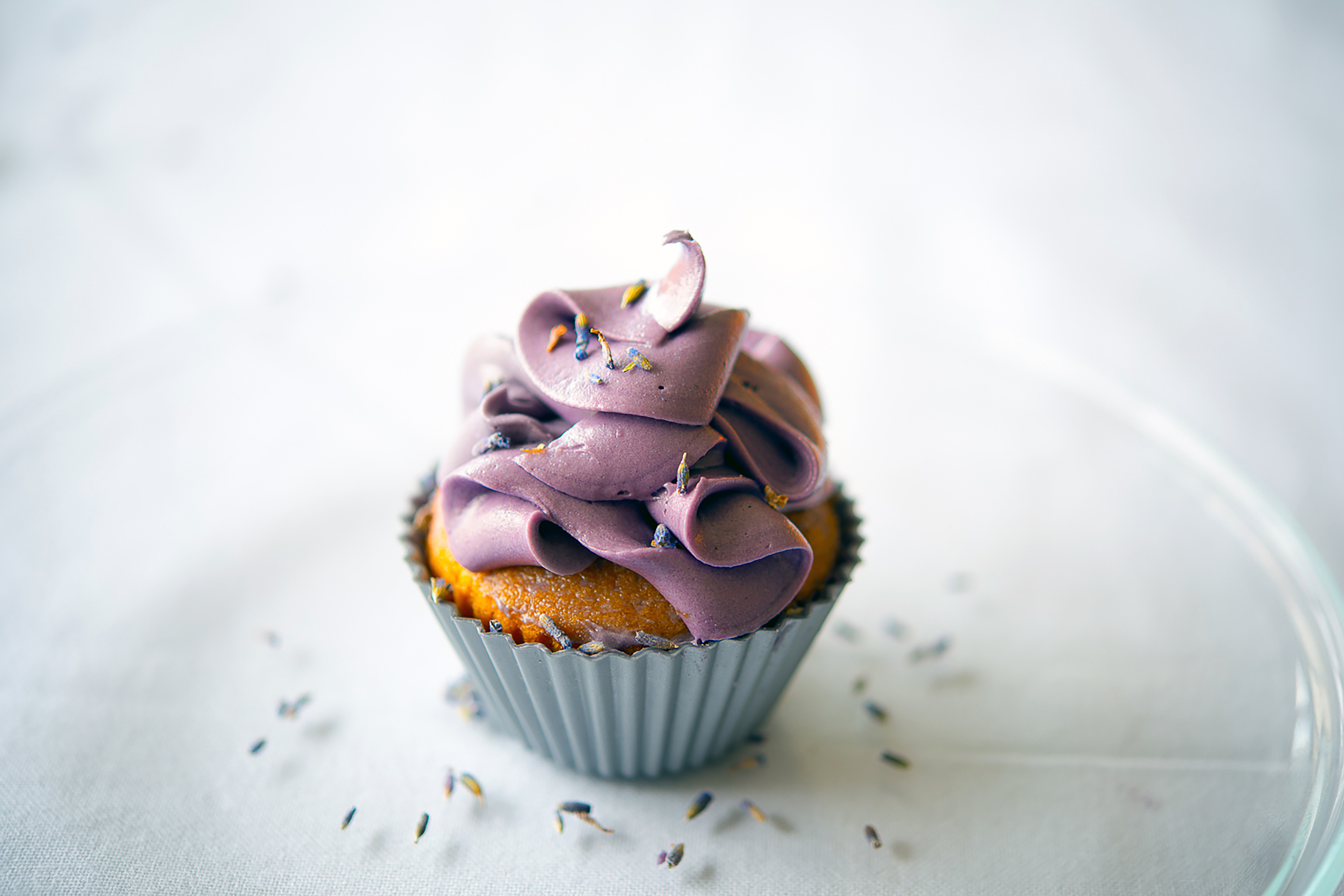 Lavender Cup Cakes